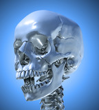 Human skull with a slightly open jaw poster
