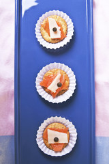 Salmon and Cheese Canapes