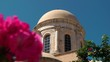 Pink flowers on the background of the Greek church