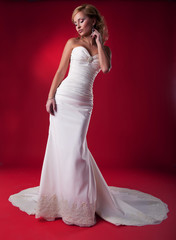 Fiancee in long wedding dress