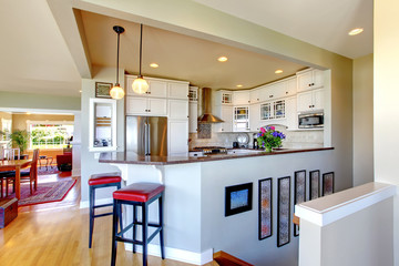 Kitchen interior design. White cabinets and bar.