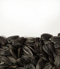 Black sunflower seeds, spilling on white background