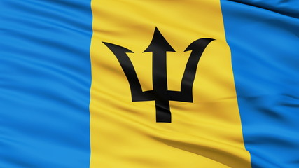Fluttering Flag Of Barbados