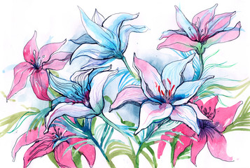 lily flowers (series C)