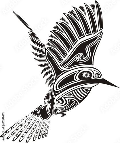 Vector Colibri