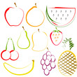 Fruits in Line Art