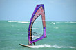 Purple Windsurf Sail