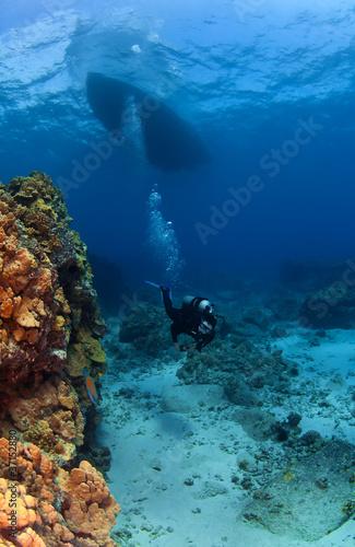 Scuba Diver exploring under the Boat