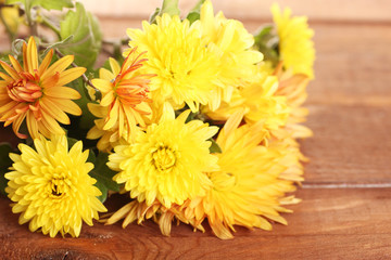 Orange Chrysanthemums flowers on wooden background