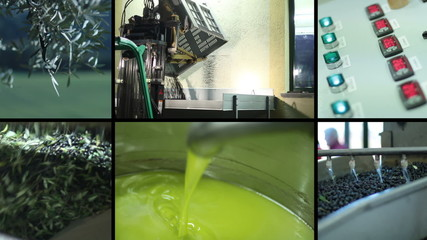 Oil mill - olive oil production