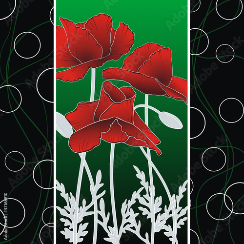 summer poppies on abstract strips