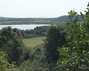View from observation deck. Lake surrounded by forest.