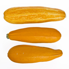 yellow marrows