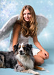 Christmas: Beautiful angel wit many sparkling stars and dog