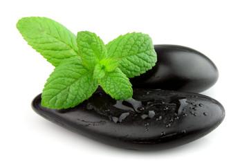 Fresh mint on the black stones