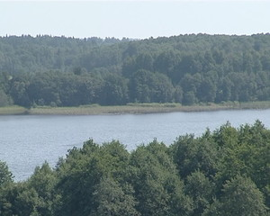 Rippled lake surrounded by forest. View from observation deck.