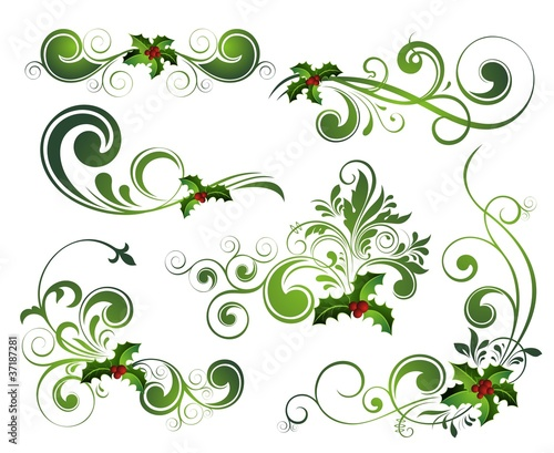 Vector   Christmas holly set