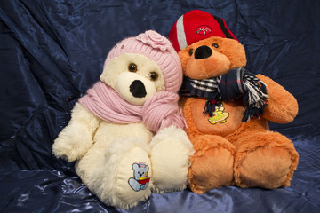 A couple of teddy-bears in scarfs and hats