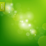 Fototapety Green Eco Background With Blur
