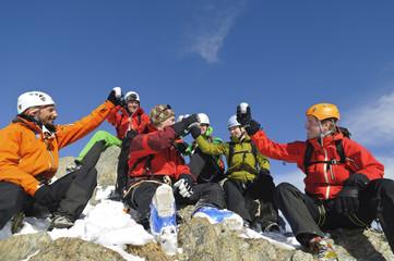 gemeinsamer Gipfeltrunk