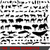 Fototapety Set of 100 very detailed animal silhouettes