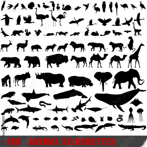 Set of 100 very detailed animal silhouettes