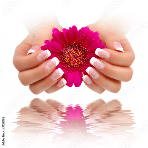 Nailart French Rosa Weiss