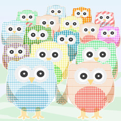 owls Collection cute and colorful. vector