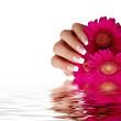 Nageldesign rosa