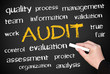 AUDIT - Business and Quality Concept