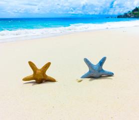 Vacations Idea Sea