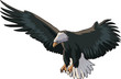 American Eagle In a Flight