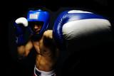 Portret boksera - 37232020
