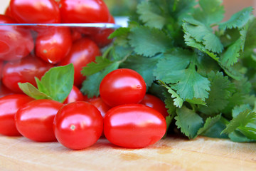 fresh tomatoes and cilantro
