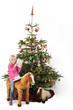 Weihnachtsbaum, Christbaum 02