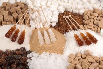 Sugar variety