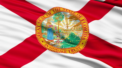 Waving Flag Of The US State of Florida