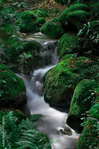 The beautiful Waterfall in forest