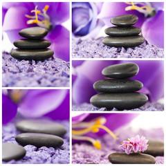 spa, colección violeta