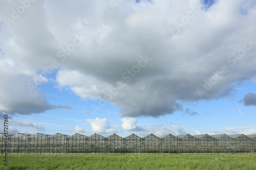 Greenhouses onder cloudy sky