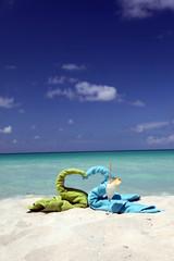 Honeymoon on tropical beach