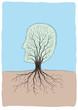 albero viso