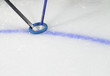 Ringette Sticks and Ring on Ice