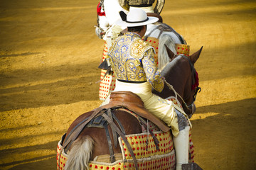 Bullfight on horseback. Typical Spanish bullfight.
