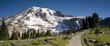 Rainier Panorama