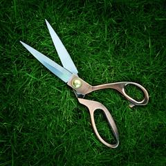 scissors on grass