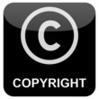 Internet Button - Copyright