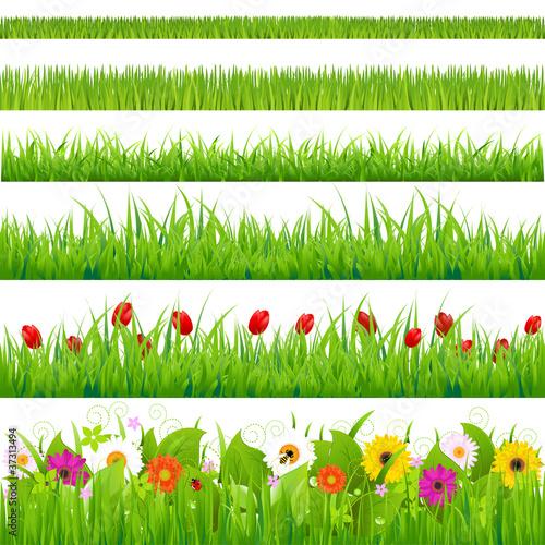 Duża Trawa I Zestaw Kwiatów