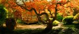 Tree in an Asian Garden - Fine Art prints