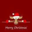 Elch mit Weihnachtsgrüßen